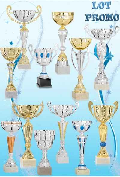 Lot de 12 Coupes 2018-4